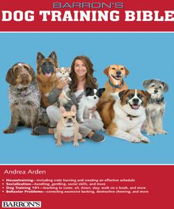 Andrea-book-cover